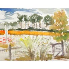 Field Treeline Sketch