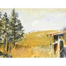 Hillside of Yellow