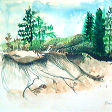 The Dunes - Watercolor Painting by Russ Bolt